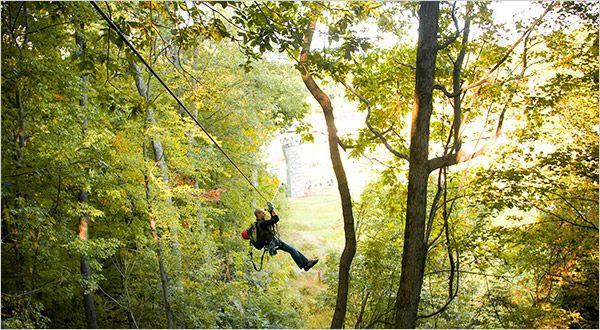 Zip Line Through Rainforest