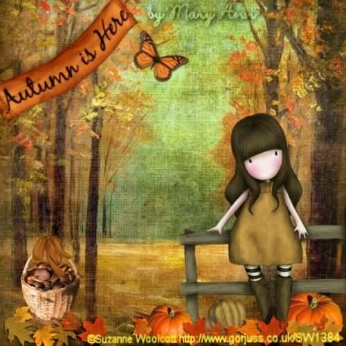 Suzanne Woolcott #autum #otoño