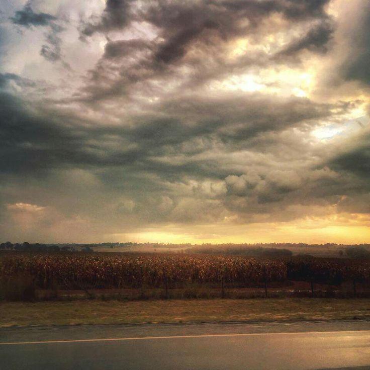 skye grove