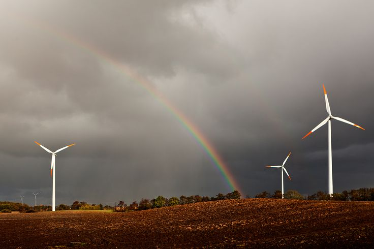 farma wiatrowa/wind farm