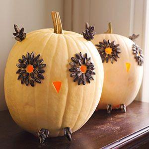 Owl Pumkins!!!!Pumpkin Ideas, Sunflowers Seeds, Fall Decor, Halloween Pumpkin, Pumpkin Decor, White Pumpkin, Pumpkin Owl, Crafts Sticks, Owls Pumpkin