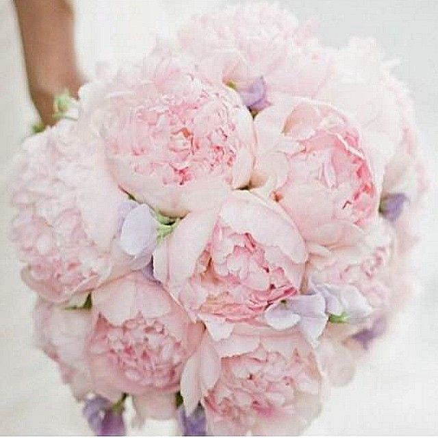 """""""Bouquet de Peônias  PEONIES"""" Photo taken by @weddingideas_brides on Instagram, pinned via the InstaPin iOS App! http://www.instapinapp.com (04/09/2015)"""