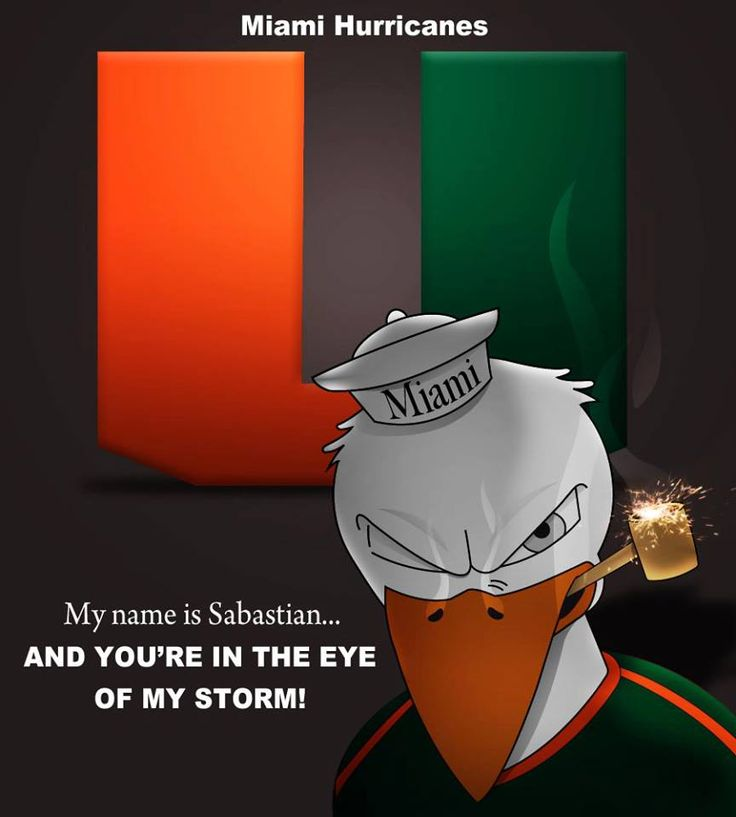 My name is Sebastian . . . and you're in the eye of my storm!