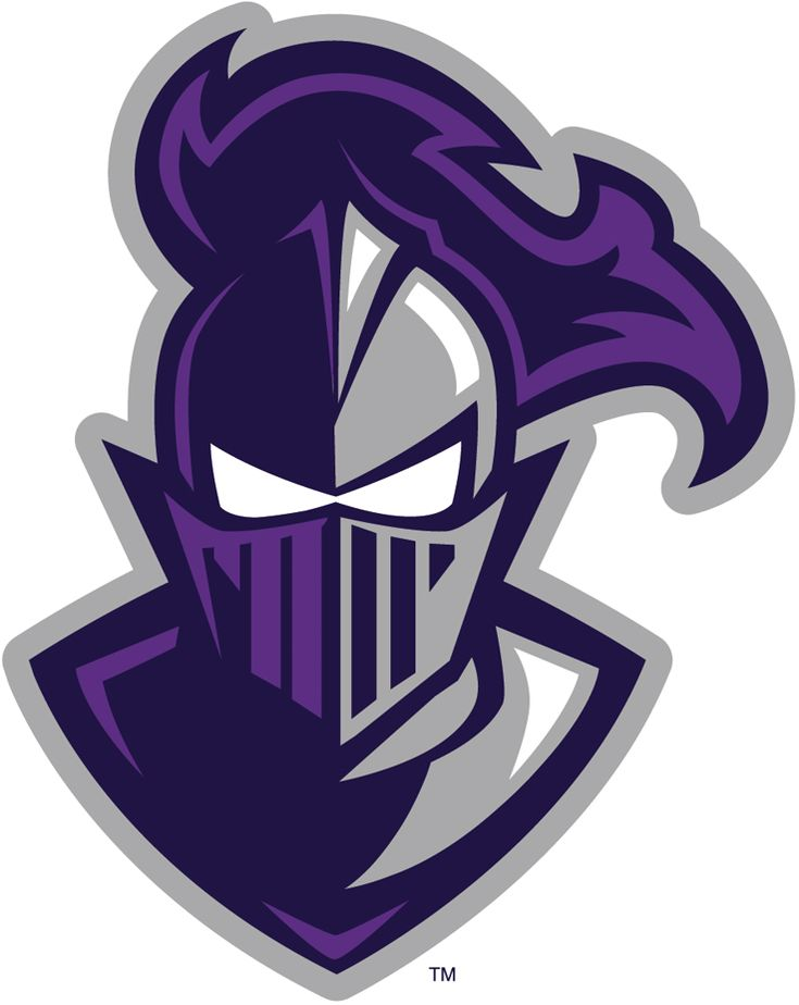 Furman Paladins Alternate Logo (2013) -