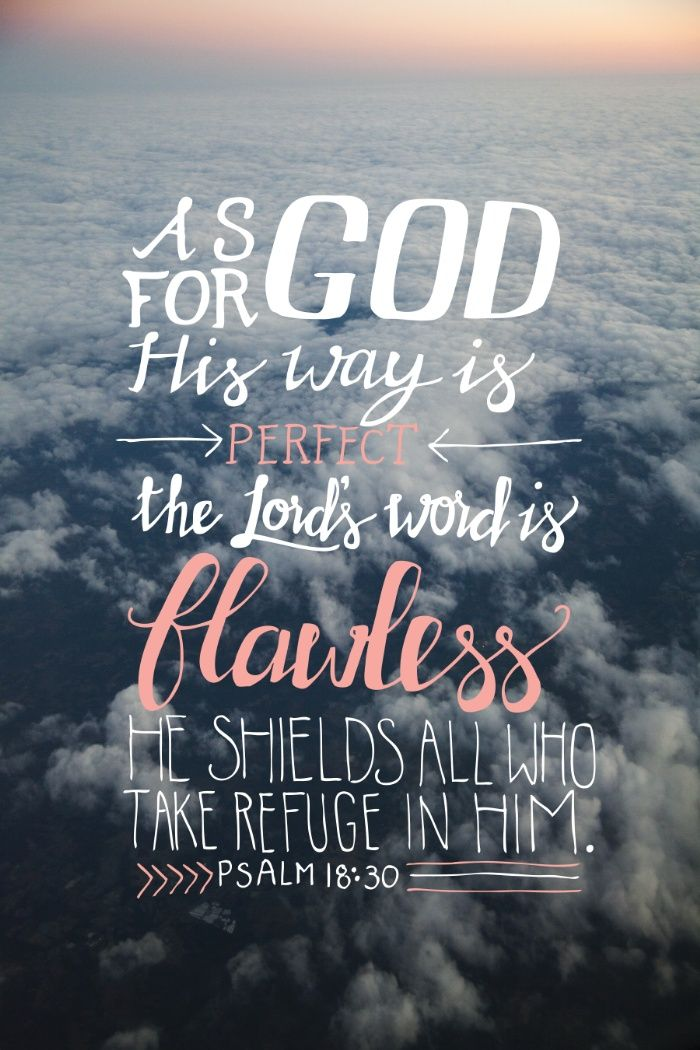 As for God, His way is perfect: the Lord's word is flawless; He shields all who take refuge in Him. // Psalm 18:30 NIV