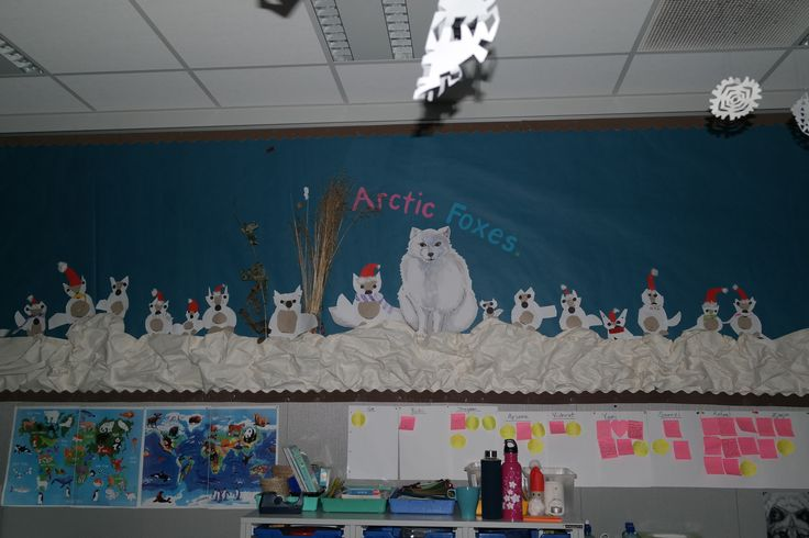 This is our classroom display of Arctic Foxes!The students made their little foxes from various shapes. I just directed them to cut out circles, triangles, half circles and directed them how to attach them all together to make a little arctic fox. They did a great job!