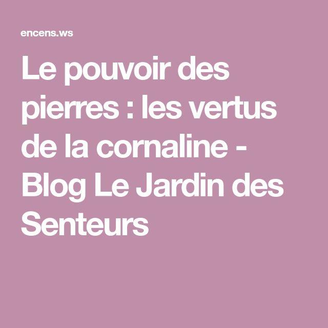 Le pouvoir des pierres : les vertus de la cornaline - Blog Le Jardin des Senteurs