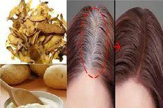 HOMEMADE POTATO SKINS DYE FOR GRAY HAIR