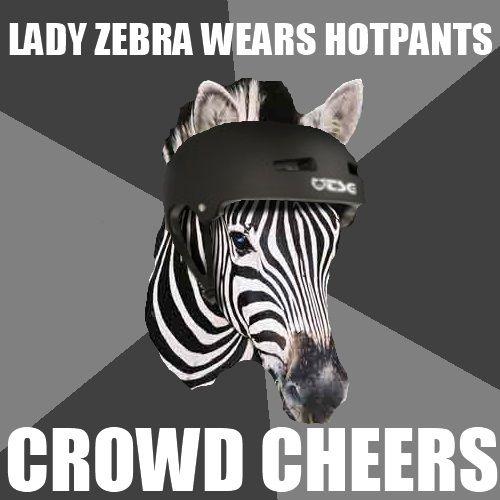 Funny Zebra Meme : Best roller derby team zebra images on pinterest