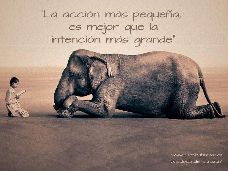 La acción más pequeña es mejor que la intención más grande.