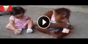 Video esilaranti di bimbi che giocano con gli animali
