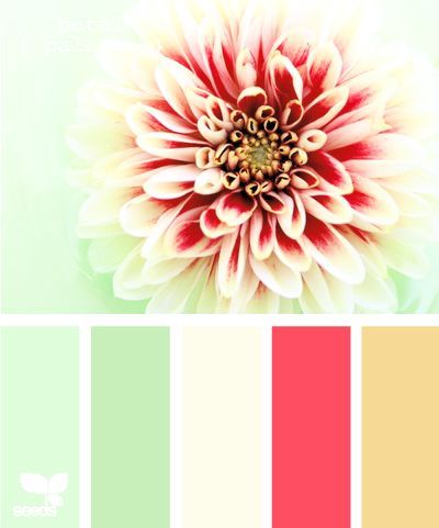 This room with these combinations of colors will look extremely lovely and youthful. The pinks bring the fun and young side, the peppermint and mint green bring the calm peaceful side and the yellow brings the two colors to be balanced.: Color Palettes, Color Inspiration, Color Schemes, Colour Palette