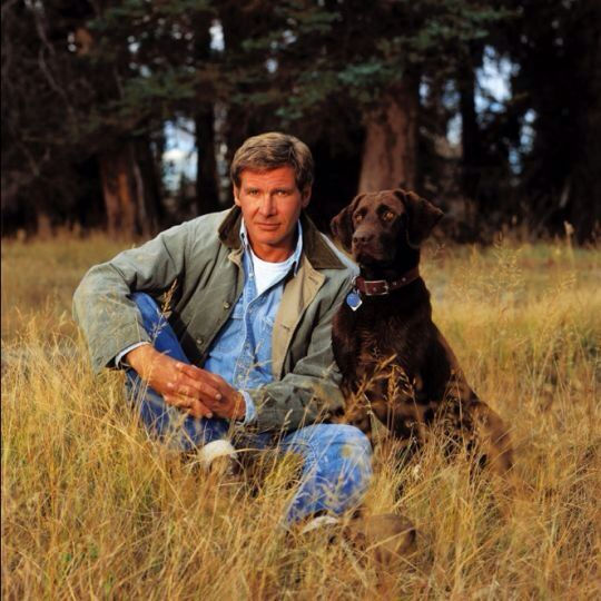 Harrison Ford with his dog.