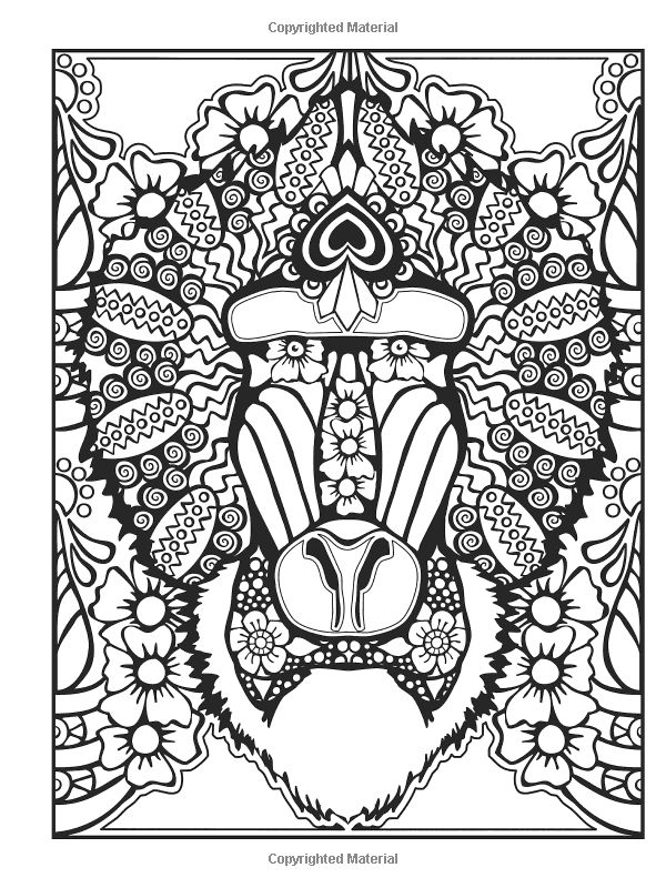 Creative Haven Animal Calaveras Coloring Book By Mary Agredo And Javier