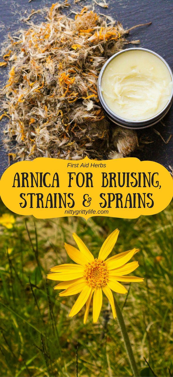 First Aid Herbs: Arnica for Bruising, Strains & Sprains via @nittygrittylife