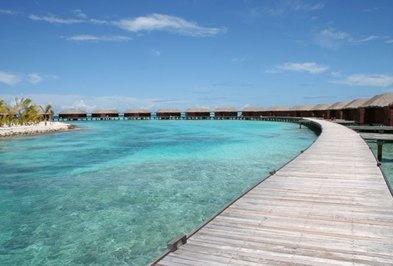 Maldive  ATOLLO MALE' NORD  La parte nord della spiaggia è posta a ridosso di una lunga lingua di sabbia e corallo, che arriva fino al reef esterno, creando una barriera protettiva che rende la spiaggia più riparata dalle correnti. Qui è possibile fare snorkeling. Sono disponibili lettini prendisole e teli mare.