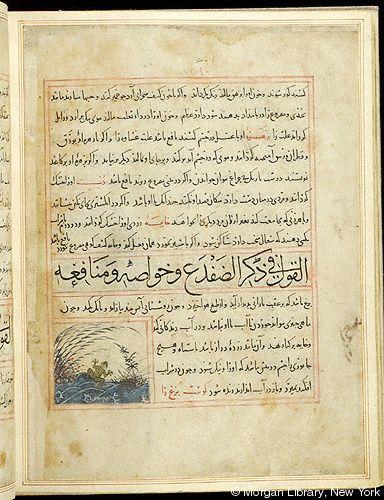 Bestiary - Medieval & Renaissance Manuscripts Online - The Morgan Library & Museum