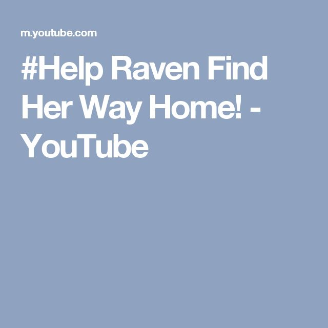 #Help Raven Find Her Way Home! - YouTube