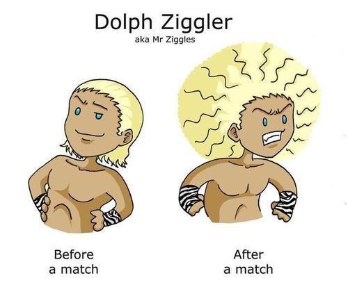 Ziggler's hair