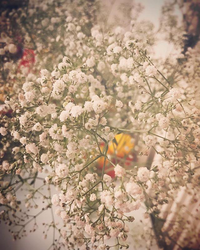 """滿心期待你們的制成品❤️ 大愛滿天星✨ 🎈訂制花環.花球.心意禮物 Instagram direct message💌  #_Kaedi #ideaByK  #prewedding #weddingphotography #花球 #花球訂造 #花環 #花環訂造#flowerbouquet #floralheadband  #weddingring #sislove #wedding #happywedding #weddinggift #weddingpresent #present #gift"" by @_kaedi. #eventplanner #weddingdesign #невеста #brides #свадьба #junebugweddings #greenweddingshoes #destinationweddingphotographer #dugunfotografcisi #stylemepretty #weddinginspo #weddingdecor #weddingstyle #destinationwedding…"