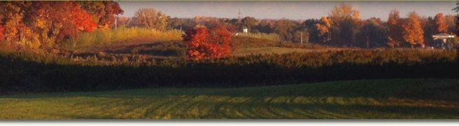 Heartland Agricultural Services, LLC help farmers and agribusiness investors to buy farms and sell farmland in Michigan. We have many farms for sale in Michigan you can choose the perfect one according to your requirement and your budget.