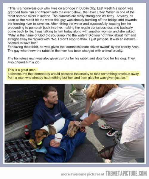 The story of a homeless guy and his bunny. So beautiful. I wanted to