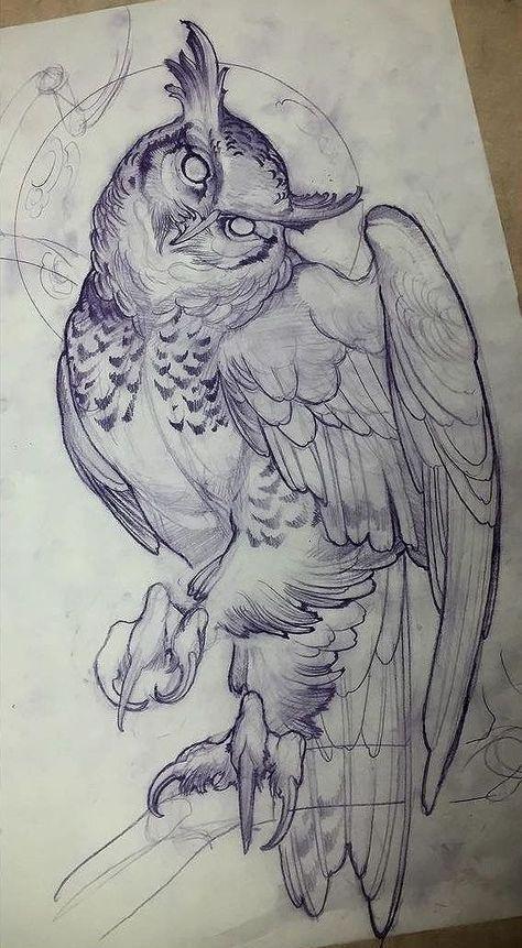 Zeichnung: Eule