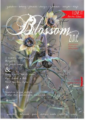 http://blossomzine.eu/ Winter issue is out!