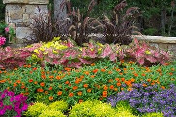 Plant heat-loving flowers: There are many colorful flowers that will take our Texas heat and laugh it off. To add a refreshing color to your summer garden, plant zinnias, ageratum, Blue daze, periwinkle, wax begonia, portulaca, purslane and torenia.