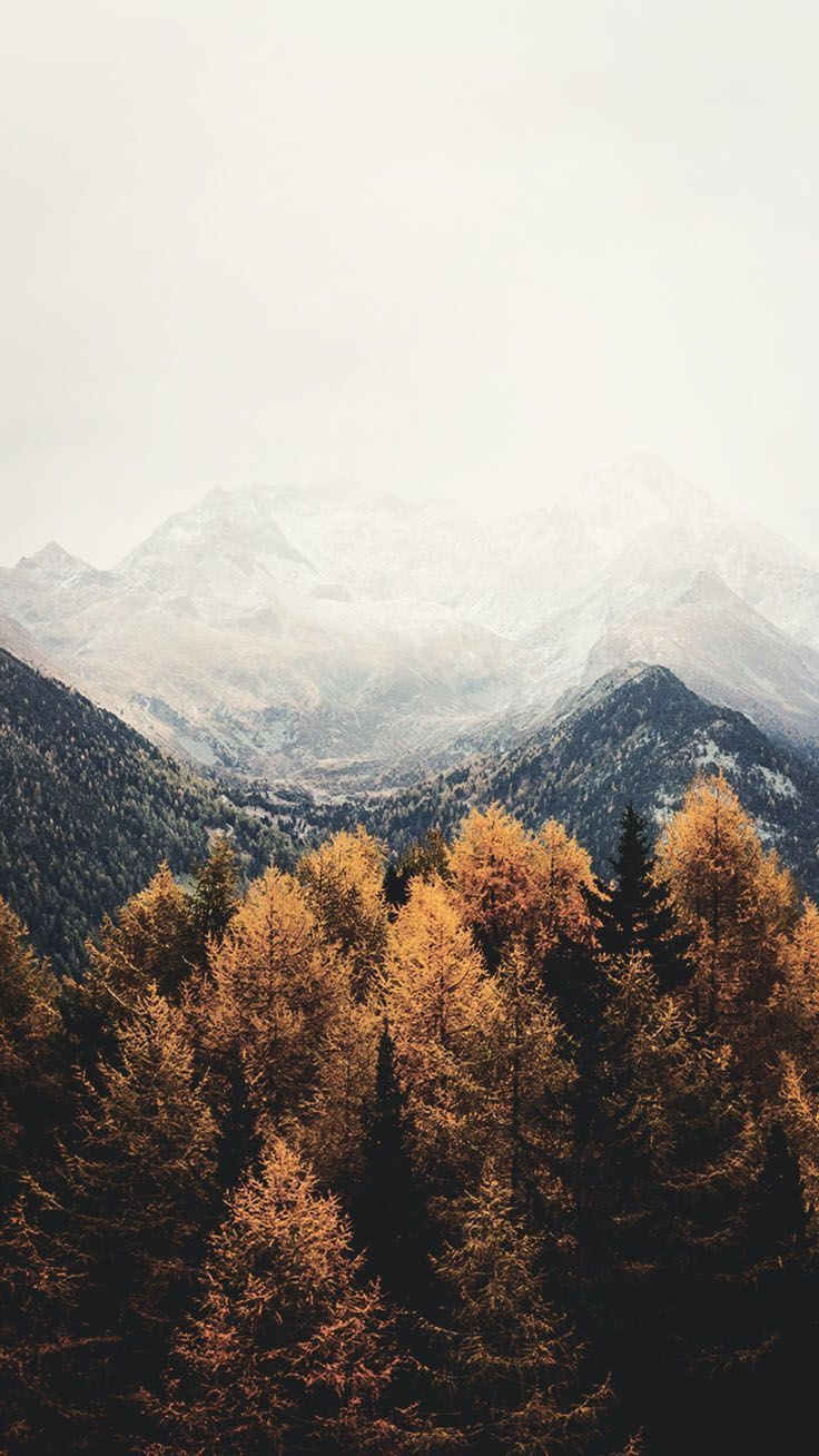 Mountains Travel Zhivopisnye Pejzazhi Pejzazhi Fotografii Prirody