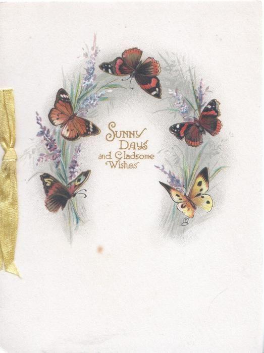 Солнечные дни и в полном веселье ПОЖЕЛАНИЯ позолотой в окружении 5 бабочек и лаванды