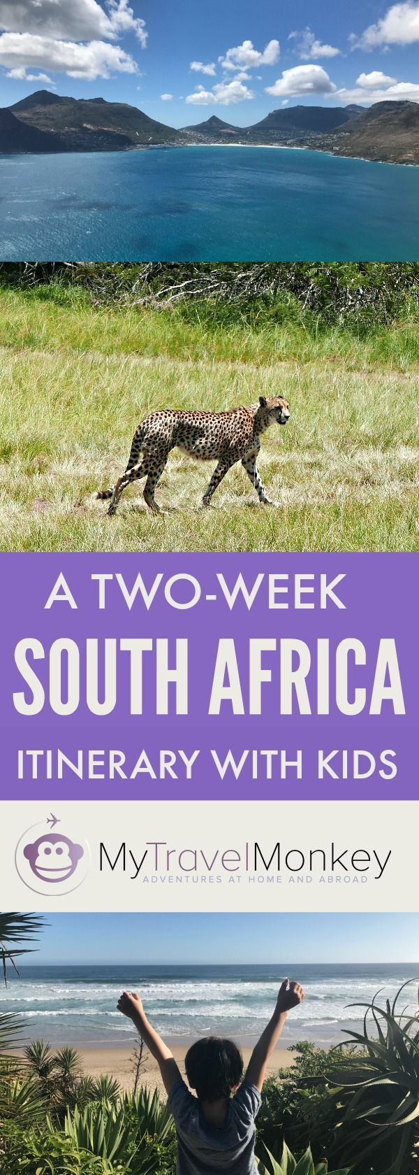 A Two-Week South Africa Trip Itinerary With Kids   South Africa   Garden Route   Itinerary   Road Trip   Travel With Kids   Family Travel   Vacations in South Africa 