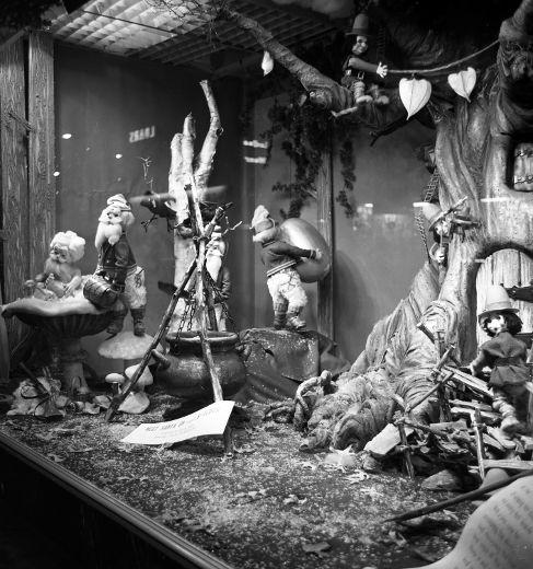 Shutterbugs captured magic of festive displays | The London Free Press