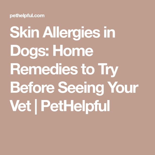 Very Dry Skin Dogs Natural Remedies