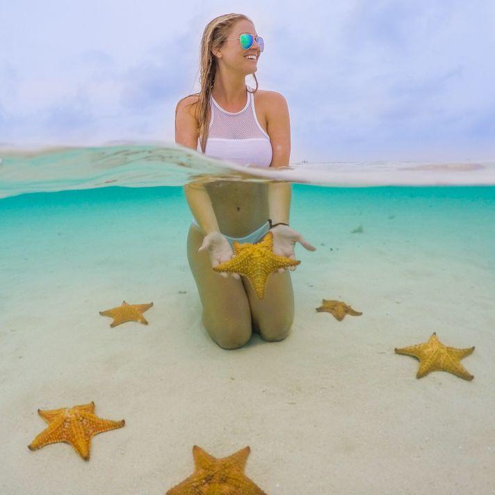 The best of Panama: San Blas Seastar