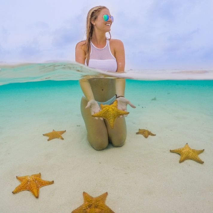 The best of Panama: San Blas Seastar