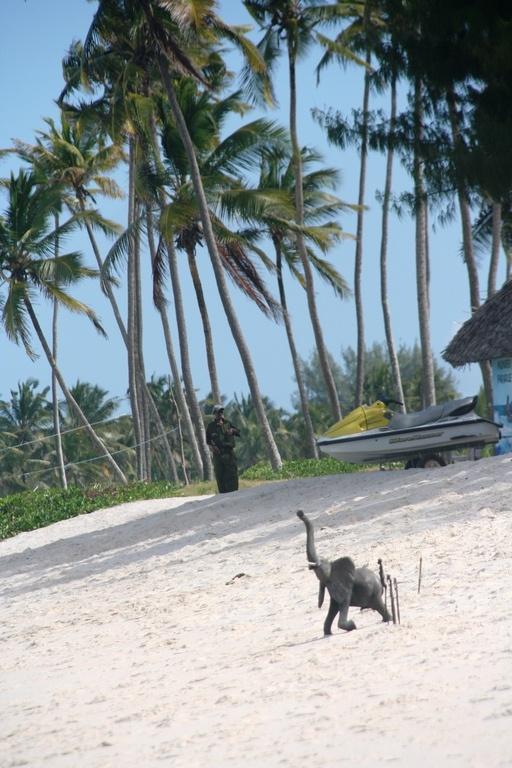 The Kenyan coast