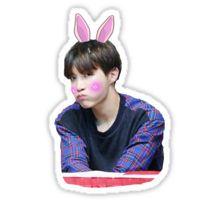 BTS - Jhope Cute Sticker Pegatina