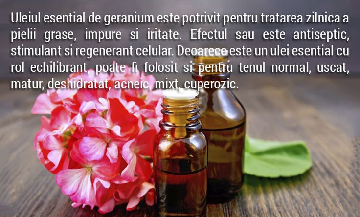 Tenul si uleiul esential de geranium