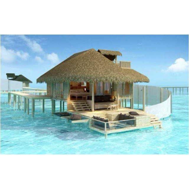Tahiti Accommodation Over Water Bungalows: 43 Best Huts On Water Images On Pinterest