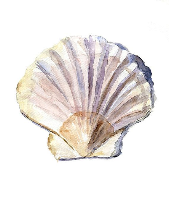 Original Shell Watercolor Painting. Zen drawing Sea by Zendrawing