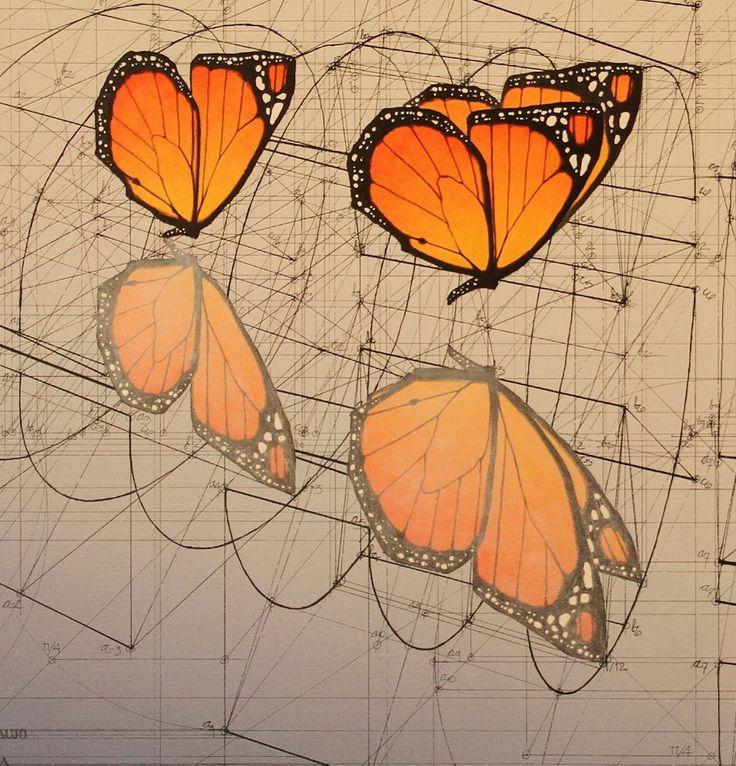 Monarch Butterflies, Water Mirror Reflection
