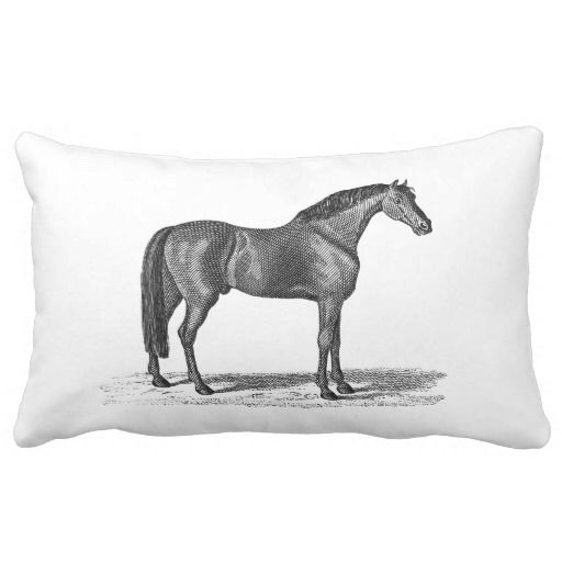 ==>Discount          	Vintage 1800s Arabian Horse Illustration - Horses Pillows           	Vintage 1800s Arabian Horse Illustration - Horses Pillows lowest price for you. In addition you can compare price with another store and read helpful reviews. BuyShopping          	Vintage 1800s Arabian ...Cleck Hot Deals >>> http://www.zazzle.com/vintage_1800s_arabian_horse_illustration_horses_pillow-189125088351833539?rf=238627982471231924&zbar=1&tc=terrest