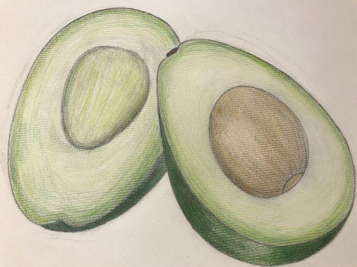 avocado drawling art coloredpencil Avocado, Colored