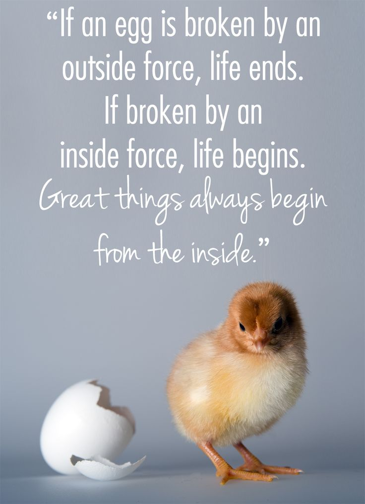 Great Things Always Begin From the Inside #addiction #recovery #inspiration http://www.nkymed.com/
