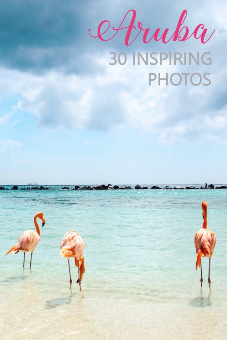 Is Aruba worth visiting? Find out with these 30 amazing photos of the Carribean gem... they will make you wanna buy a plane ticket!