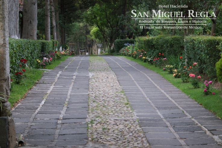 AV. PRINCIPAL DEL HOTEL HACIENDA SAN MIGUEL REGLA