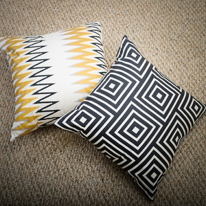 Reversible Pillows, Fresh Appeal