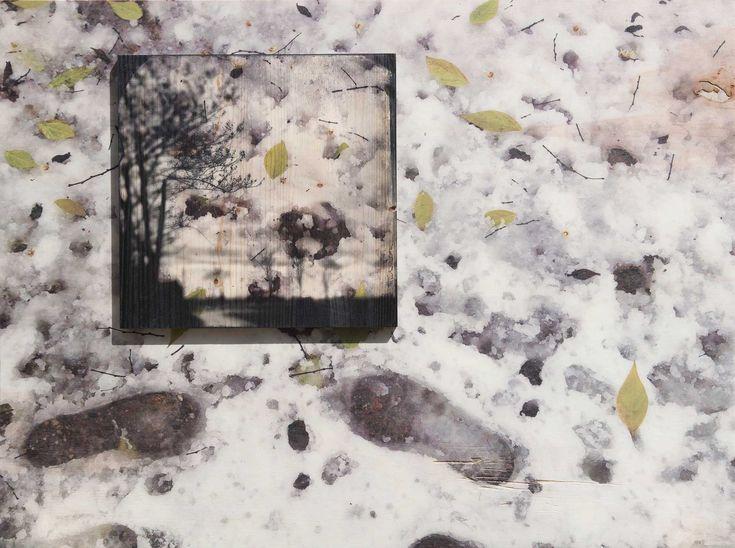 """#Photocellule #legni #wood #Turcato #fotografia  #FOTOblister #Arte """"Orme"""" – Stampa digitale diretta su foglio di compensato di pioppo. Composizione in sovrapposizione secondo soggetto stampato su lamellare di abete – cm60x80 – trattamento conservativo anti UV – 2017 – ©W. Turcato"""