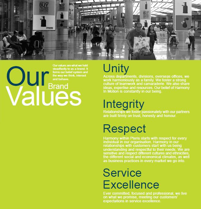Pteris Global - Our Brand Values